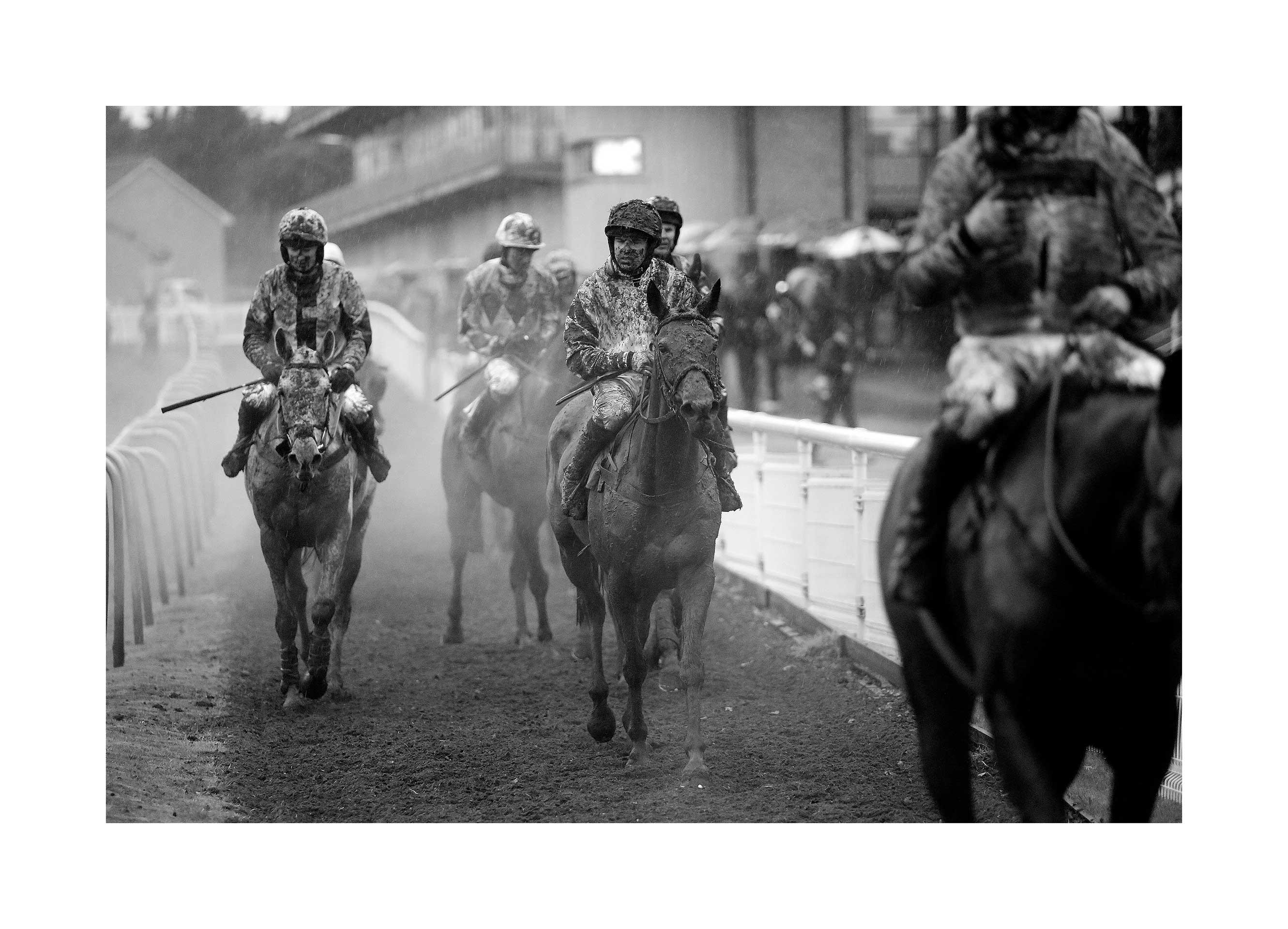 Fontwell Racecourse, 29 Jan 2017