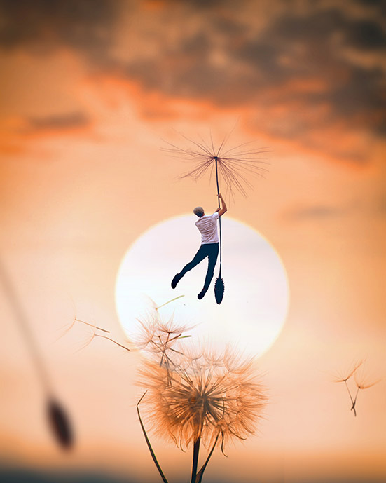 Joel Robison Collaboration